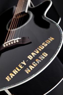 Harley008.jpg