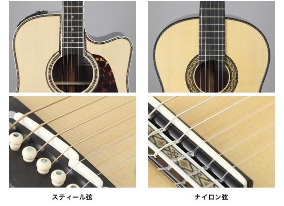 弦の種類.jpg