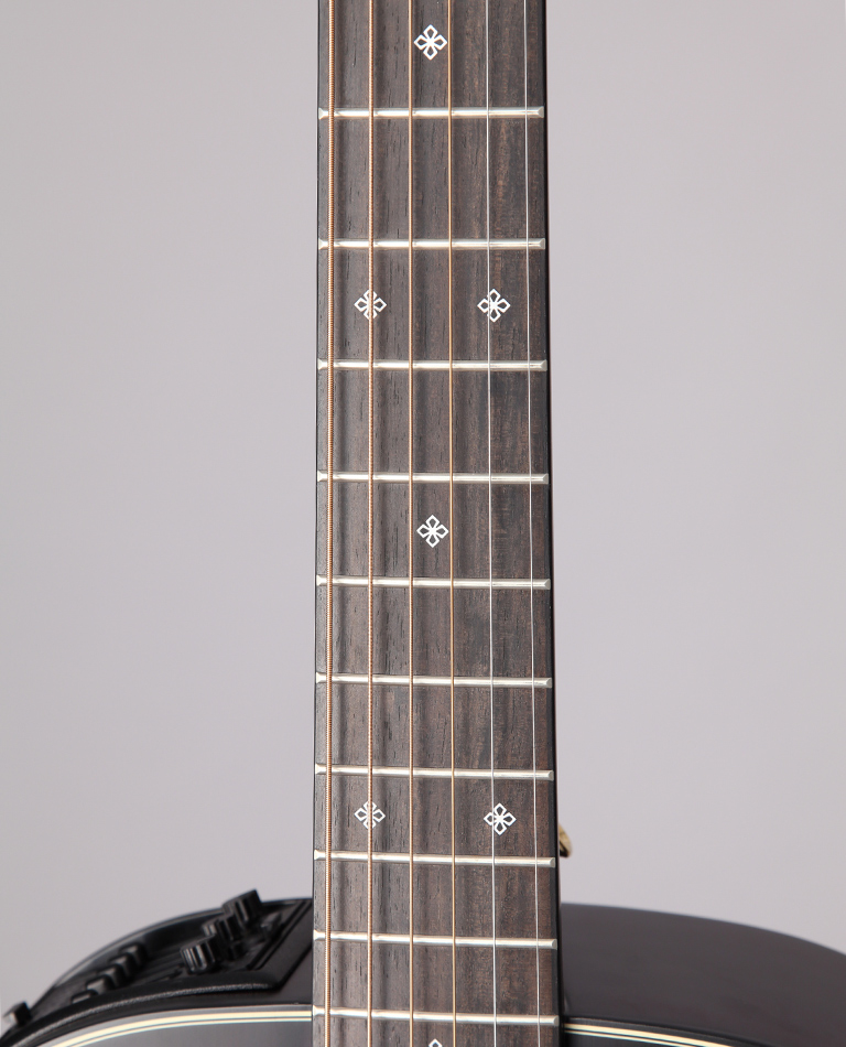 https://www.takamineguitars.co.jp/blog/TDP471M_MTB_003.JPG